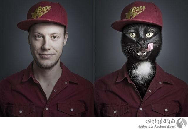دمج الشخصيات مع قططها