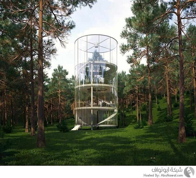 منزل زجاجي وسط الغابات الكثيفة 1