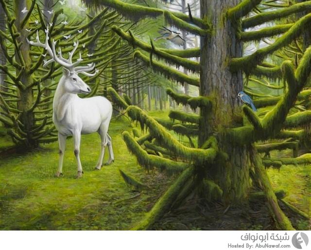 لوحات فنية للطبيعة ٢