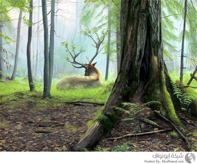أعمال فنية للطبيعة