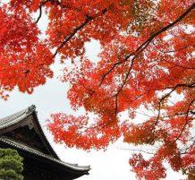 الخريف في اليابان