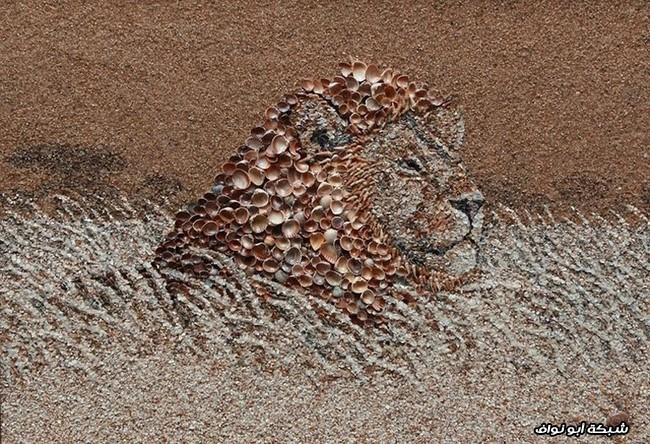 أسد من الرمال والصدف