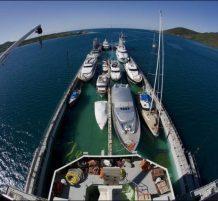 هجرة السفن