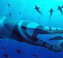 ديناصور بحري
