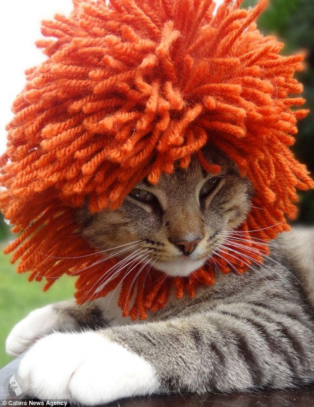قبعات رائعة