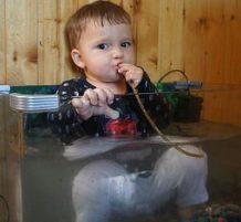 طفل جالس في حوض أسماك