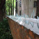 جدار حماية