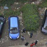 سيارة تغطيها النباتات