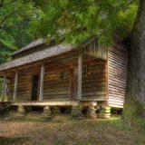 منزل في الغابات