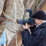 السنجاب والمصور