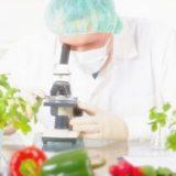 تطورات غذائية
