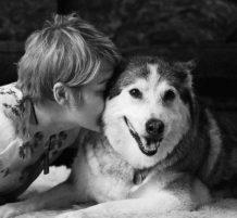 حيوانات أليفة مع أصحابها