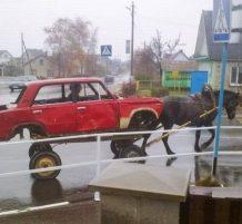 سيارة يقودها حصان