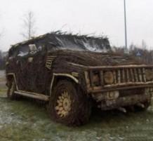 سيارة من أغصان الشجر