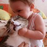 شاهد تعابير وجه قطة يعضها طفل