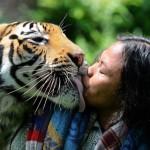علاقة صداقة غريبة تجمع بين شاب و نمر بنغالي