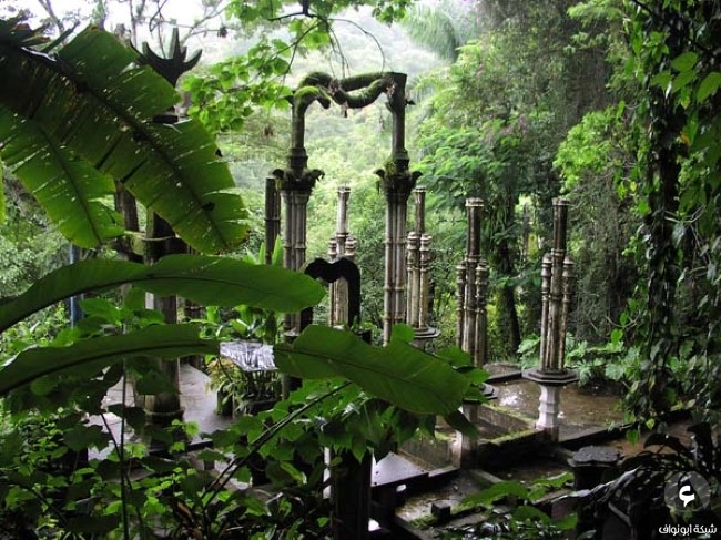 غابات المكسيك