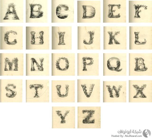 حروف اللغة الإنجليزية بأشكال الطبيعة الأنيقة