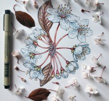 رسم الربيع بأسلوب مبدع