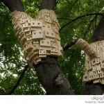بيوت طيور تشبه خلايا نحل