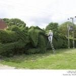 تحويل شجرة إلى تنين ضخم