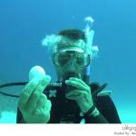 كسر بيضة تحت الماء