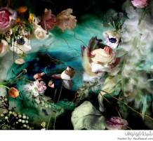 لوحات أزهار