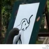 موهبة الرسم