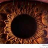 مايكروسكوب مقرب للعين البشرية
