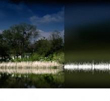 الطبيعة و الموجات الصوتية