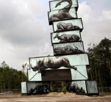 حملة ضد صائدو الحيوانات البرية