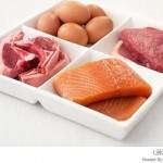 حمية البروتين