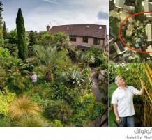 رجل يقضي 25 عاماً لتحويل حديقته إلى جنة إستوائية