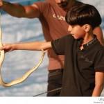 طفل سعودي يلعب مع الثعابين
