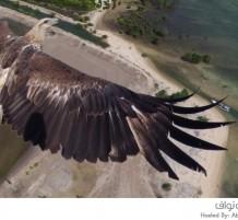 مسابقة التصوير من خلال الطائرة بدون طيار