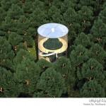 منزل زجاجي وسط الغابات الكثيفة