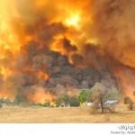حريق حديقة