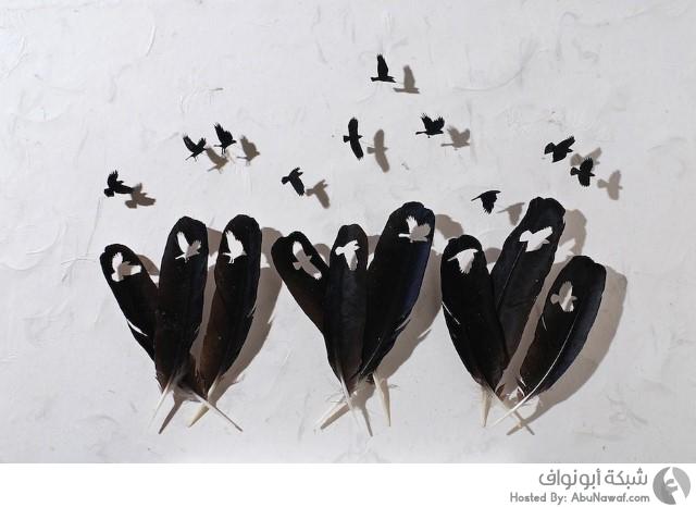 ريش الطيور