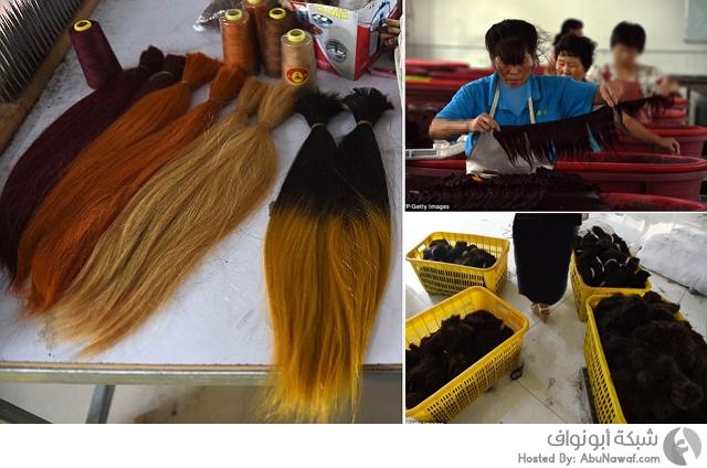 صناعة شعر بشري