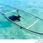 قارب كاياك شفاف