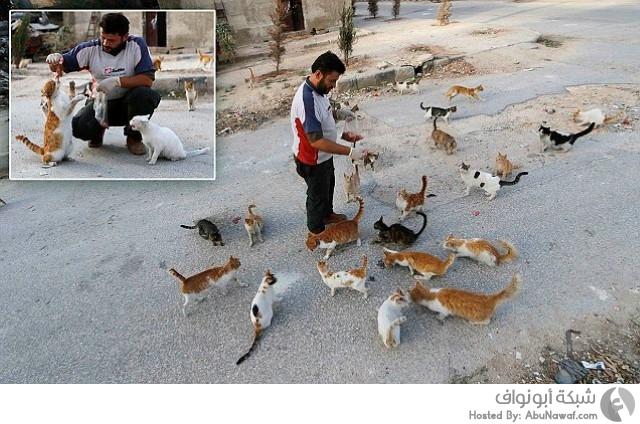 مسعف سوري ينفق مدخراته لإطعام القطط