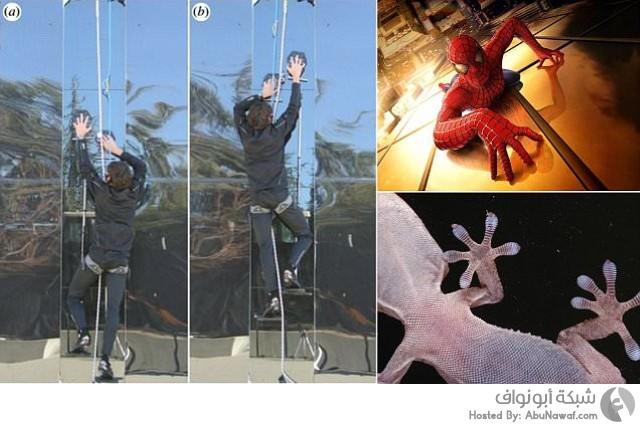 سبايدرمان spiderman قفازات تسلق أبراج زجاجية