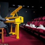 بيانو للقطط
