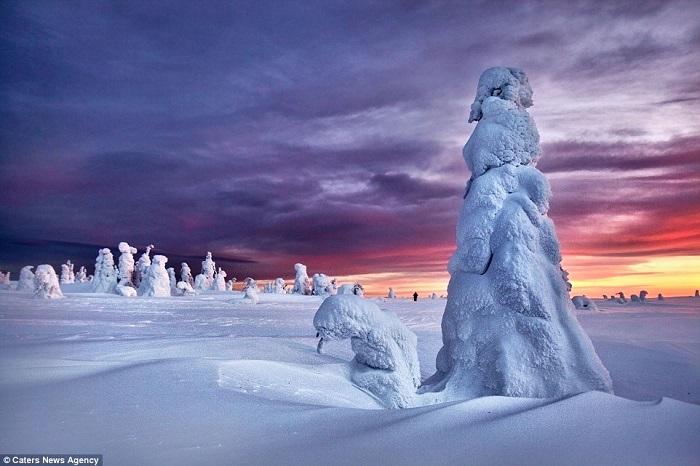 تماثيل جليدية3
