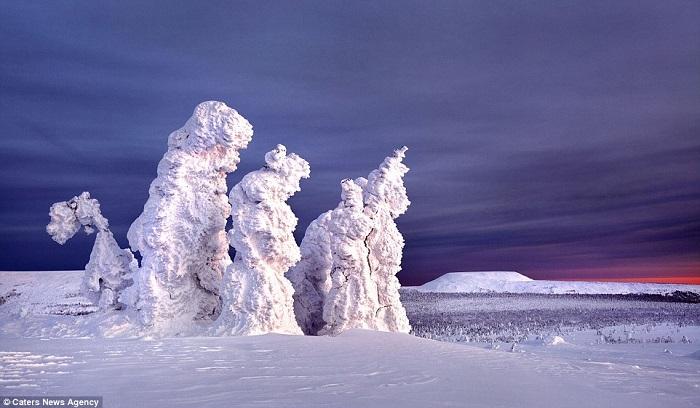 تماثيل جليدية5