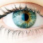 العين ترى الأشعة تحت الحمراء غير مرئية
