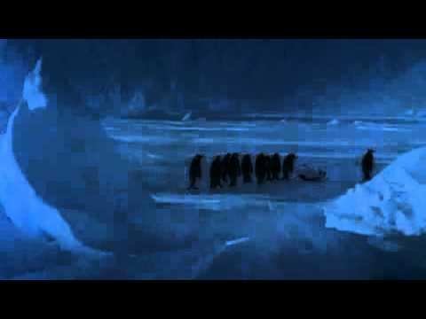 بطريق يتزحلق عالجليد