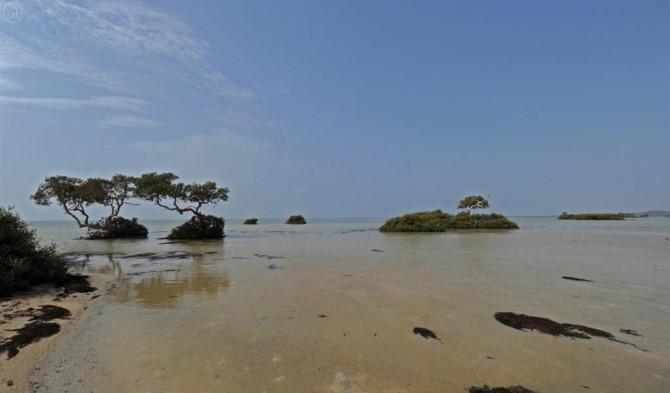 شواطئ عسير3