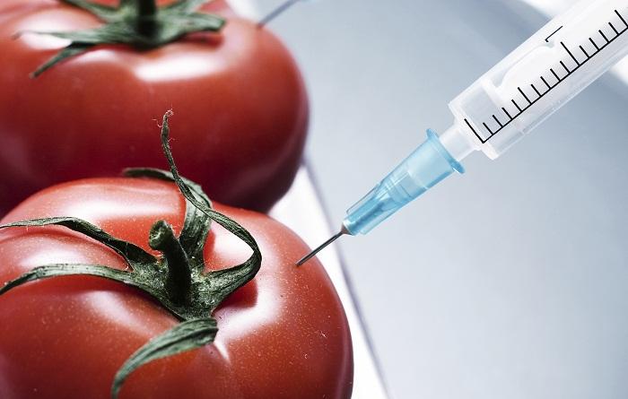 أغذية معدلة وراثيا