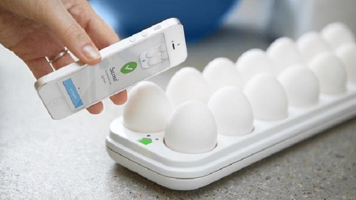 The Egg Minder
